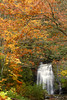 Falls and Autumn Color