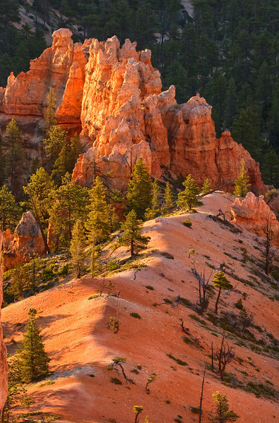 Hoodoo Outcropping, Bryce Canyon National Park