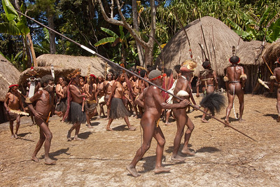 A ceremonial welcoming dance ensues. A well-dressed Dani man wears only a koteka, or penis gourd, and a slender cordage covering the anus to keep out evil spirits. Women wear grass skirts. Head and face ornamentation is also popular among both men and women.