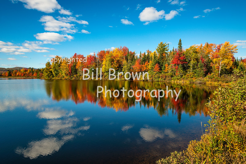 Fall along the Androscoggin River
