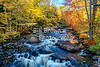 Water Rushing by Colorful Foliage