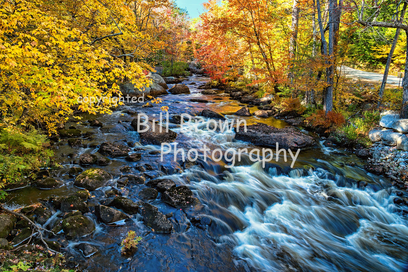 Rushing by the Fall Foliage