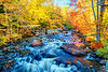 Stream in Fall Foliage