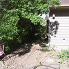 I'll put a pathway from the front of the house to the back along here (the south side of yard).  You can see the fence going through the elm tree if you know where to look near that chair.