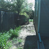 The north side of the yard from the front of the house.