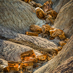 Petrified Log, Wash
