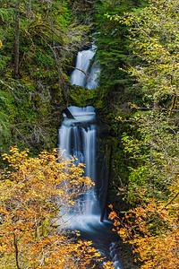 Unique Curly Creek Falls
