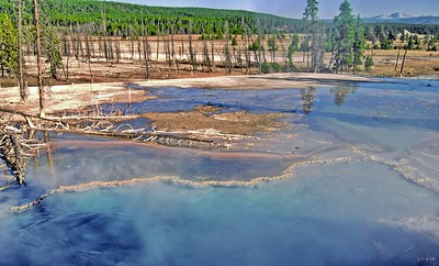 Yellowstone National Park:  The Flats