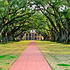 Oak Alley Plantation, Vacherie, St. James Parish, Louisiana