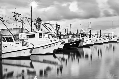 Row of Shrimpers