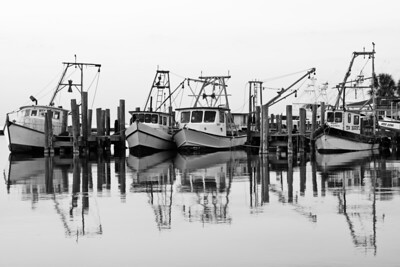 Moored Shrimp Boats in Fulton Harbor