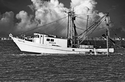 Capt DL Shrimping  off Texas City Dike