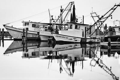 Fulton Harbor