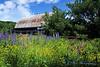 Bunker Hill Barn