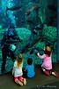 Aquarium of the Pacific #2