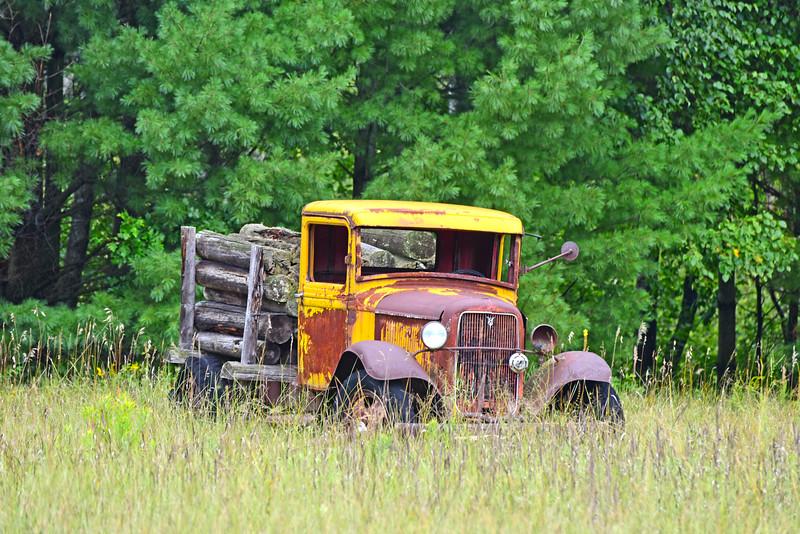 logging truck - 01