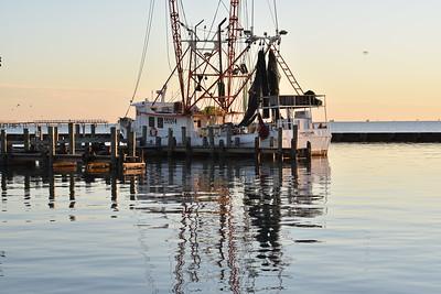 Gulf Shrimper