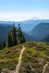 A Trail Well Traveled