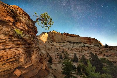 Zion Nocturne, Utah