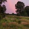 Kendall Hills Evening
