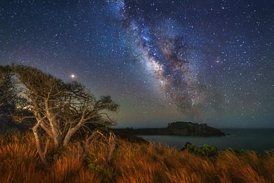 Havens Neck & Milky Way, Gualala, California