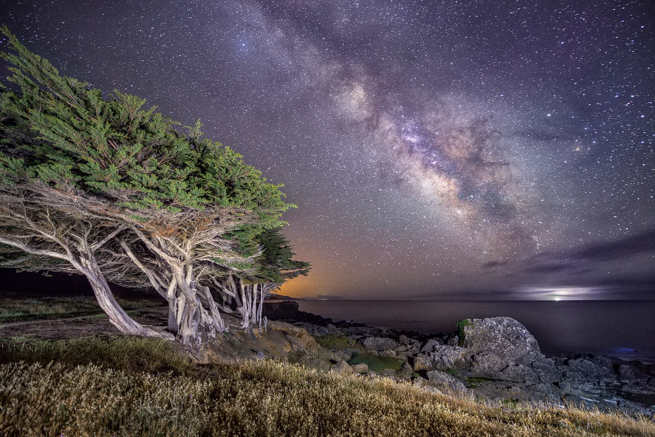 Spring Milky Way, Sea Ranch, California