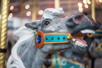 Looff Carrousel Grey Horse