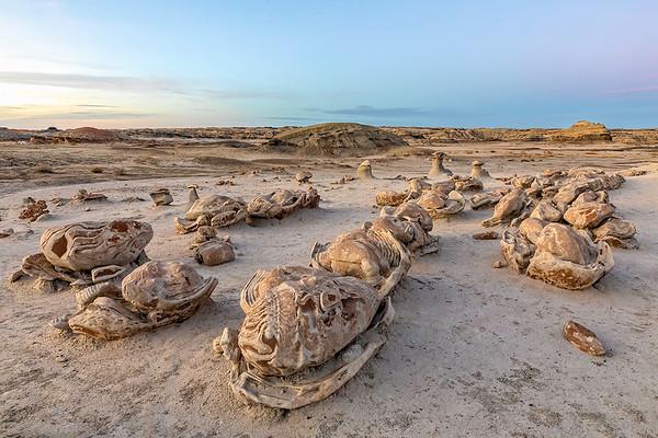 Bisti Badlands | New Mexico