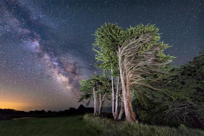 Night on the Green, Sea Ranch, California