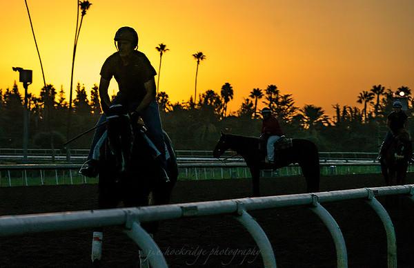 Sunrise at Santa Anita Park