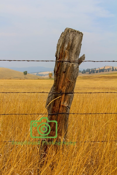 Old Ranch Fencepost