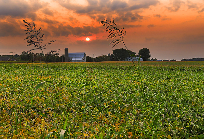 Sunset in Elburn, IL