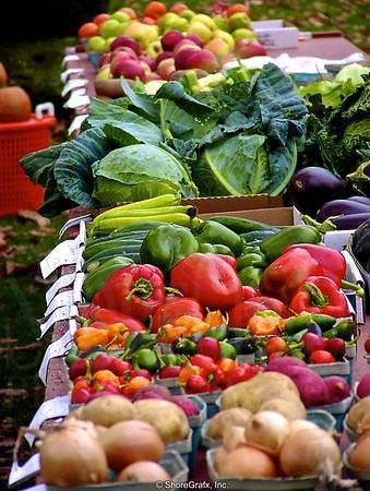 2004 Farmers Market