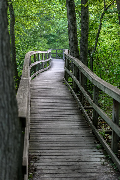 Boardwalk Trail