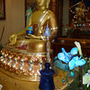 Medicine Buddha at NY Temple