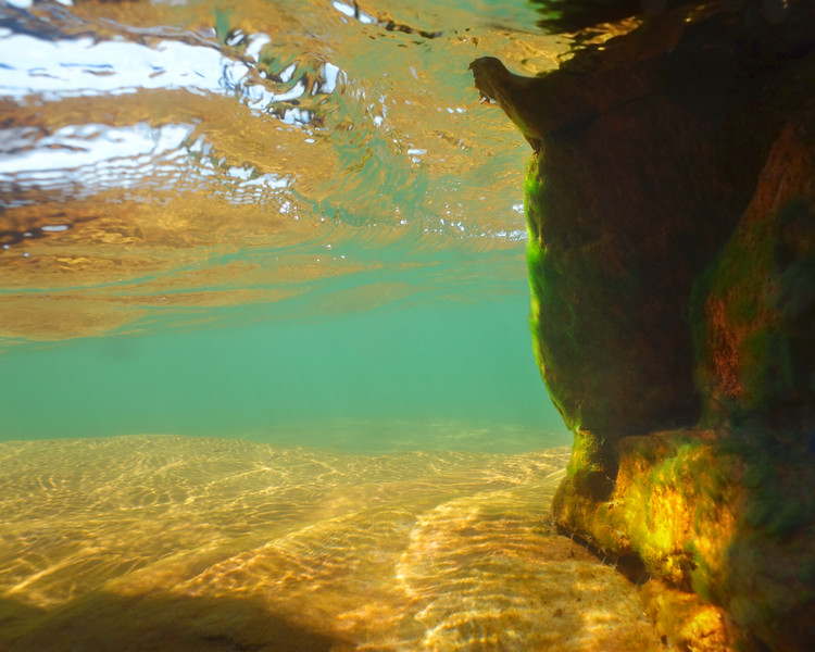 """In a New Light: Apostle Islands - Anonymous, 15 - """"Watching from Afar"""""""
