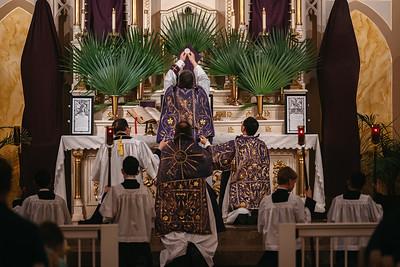 _NIK3195 Palm Sunday FSSP elevation