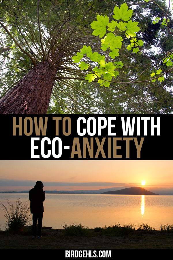 Eco-anxiety - it's real and it can be hard to combat, when you're constantly bombarded with bad news. Here are some tips on how to cope with climate grief. #GreenLiving #Climate #Eco #Sustainability #saveEarth #planetEarth #ecoanxiety #climategrief #mentalhealth