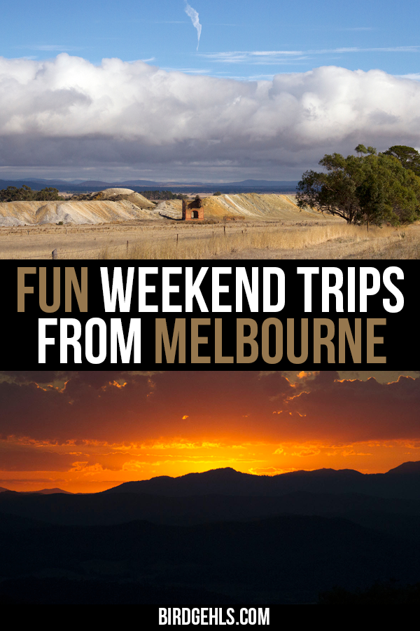 Check out these great options for weekend trips from #Melbourne. Gorgeous natural parks, beautiful beaches, cute and historic towns and plenty of food to feast on. See some momentous public art, go for a bushwalk and check out native Australian wildlife in their natural habitat! #Victoria may be Australia's second smallest state, but it has so much to offer both visitors and those who call the region home. / Day trips from Melbourne / #Melbourne / #VisitVictoria / #SeeAustralia / #Australia /