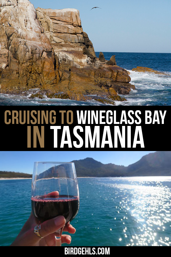 See an alternative view of one of Australia's best beaches with Wineglass Bay Cruises in #Tasmania. Good food, lovely scenery and marine life abounds. / #WineglassBay / Things to do in Tasmania /