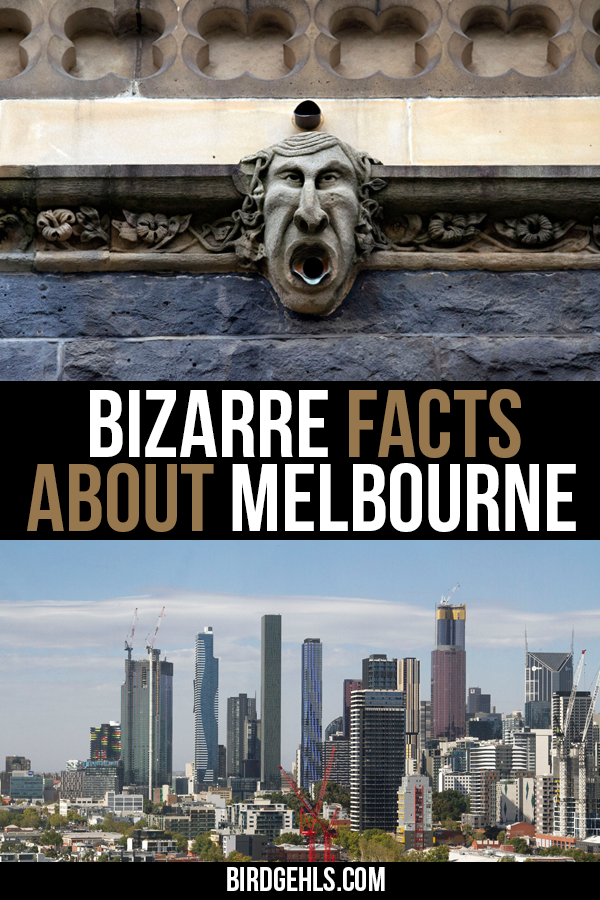 Think you know all there is about #Melbourne? Regardless, here are some interesting facts about Melbourne that you can store away for your next trivia night.