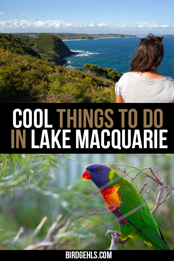Interested in getting off the beaten path in #Australia? There are so many cool things to do in Lake Macquarie, which is only a 1.5 hour drive from Sydney, making it perfect for a day trip or weekend getaway. Go bushwalking, visit almost deserted beaches, check out some local art, kayak on the lake, or take a helicopter ride over it!