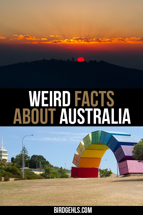 Did you know that Australia has the longest fence in the world? Or that Melbourne was nearly called Batmania? That kangaroos outnumber people in Australia? And that Oz is home to the most venomous creature in the world... and it's not a snake or spider? Australia is beautiful, diverse but also undeniably odd. Here are some weird facts about Australia, that you may or may not have known.