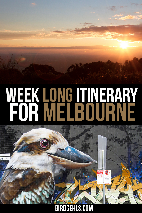 Here is a 4, 5 or 7 day Melbourne itinerary, written by a local. This guide mixes well-known icons of the city with some insider's secrets! Explore the city and well-known suburbs of #Fitzroy, #Brunswick and #Collingwood. Take day trips to popular tourist destinations like the Yarra Valley, Great Ocean Road and the #Dandenongs. / Fun things to do in #Melbourne / Where to stay in Melbourne / Weekend in Melbourne / Melbourne Attractions / Day Trips From Melbourne / #VisitVictoria / #YarraValley /
