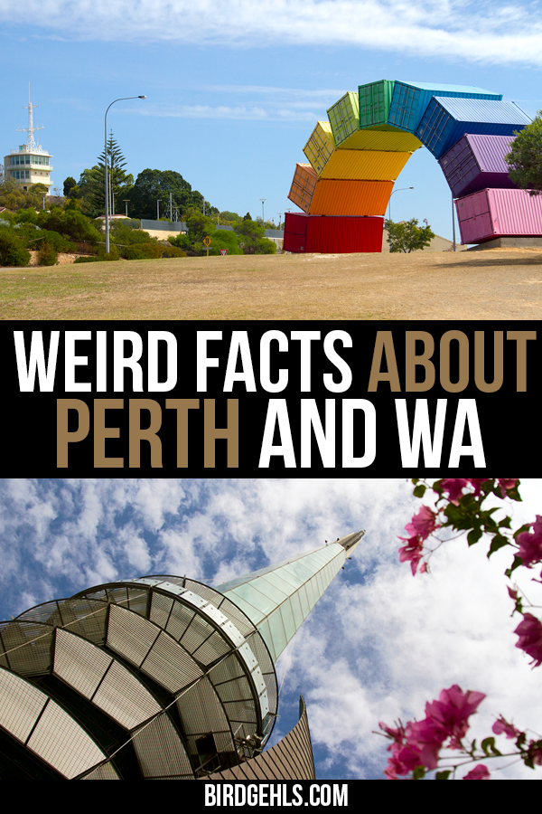 Did you know #Perth was home to the last Blockbuster in Australia and that Western Australia boasts the biggest rock in the world? Here are some other weird facts about Perth and the state of WA, making this area of #Australia well worth a visit! / Things to do in Perth / Things to see in Western Australia / Road Trips Western Australia /