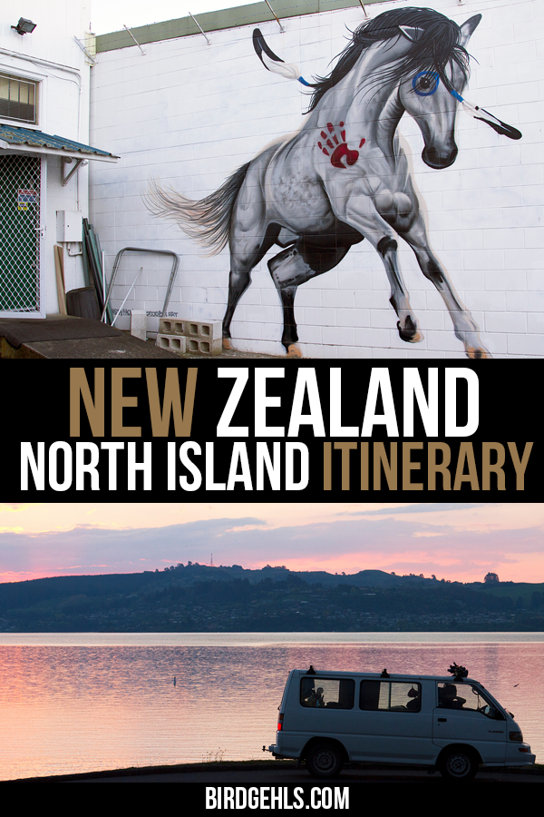 This New Zealand North Island itinerary is ideal for those wanting to self-drive through the island, catching some unique sights. Find out how long you should spend in each town, what to do and where to stay, to make the best of your New Zealand road trip. / #NewZealand / #NorthIsland / #RoadTrips / Best Road Trips /