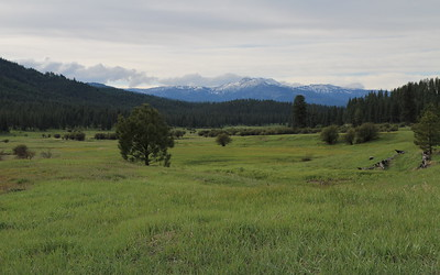 View of Pollock Mountain, north of New Meadows, ID