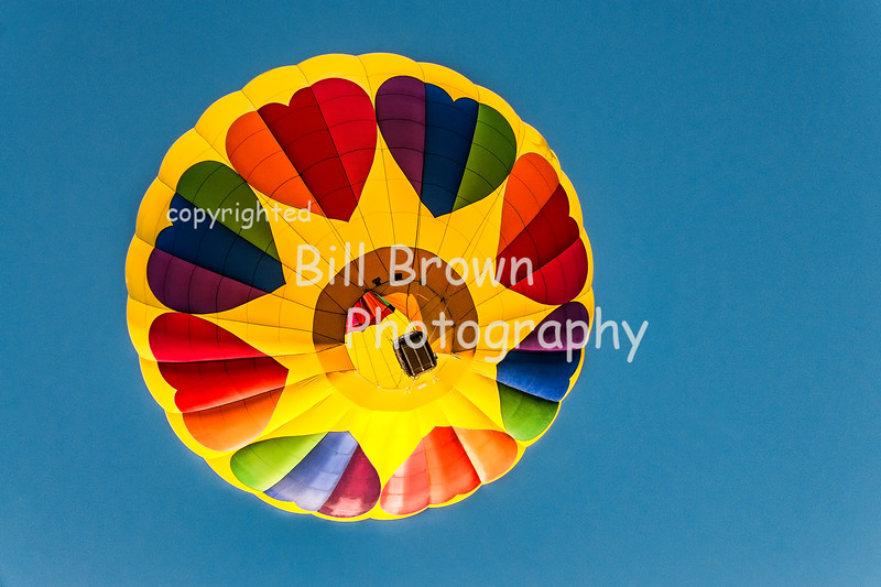 Hearts take Flight at Albuquerque Balloon Fiesta