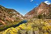 Rio Grande in Northern New Mexico
