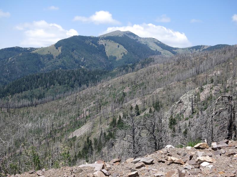 Sierra Blanca Peak from the east along Hwy 532.